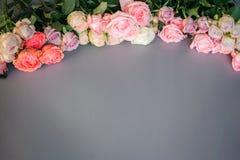 L'image des roses colorées se situent sous la forme d'arc sur le fond gris image stock