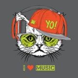 L'image du chat dans les verres, écouteurs et dans le chapeau de hip-hop Illustration de vecteur Images stock