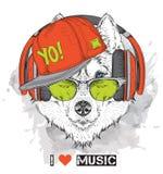 L'image du chien de traîneau dans les verres, écouteurs et dans le chapeau de hip-hop Illustration de vecteur Photographie stock libre de droits