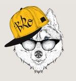 L'image du chien de traîneau dans les verres, écouteurs et dans le chapeau de hip-hop Illustration de vecteur Image libre de droits
