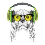 L'image du cocker dans les verres, écouteurs et dans le chapeau de hip-hop Illustration de vecteur Image stock