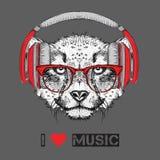 L'image du guépard dans les verres et les écouteurs Illustration de vecteur Photos libres de droits