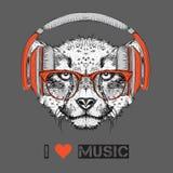 L'image du guépard dans les verres et les écouteurs Illustration de vecteur Images libres de droits