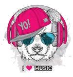L'image du panda dans les verres, écouteurs et dans le chapeau de hip-hop Illustration de vecteur Photographie stock