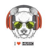 L'image du panda dans les verres, écouteurs et dans le chapeau de hip-hop Illustration de vecteur Images stock