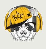 L'image du panda dans les verres, écouteurs et dans le chapeau de hip-hop Illustration de vecteur Image libre de droits
