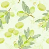 L'image sans couture de vintage de modèle des branches d'olivier avec l'huile d'olive chute Illustration de vecteur Photographie stock