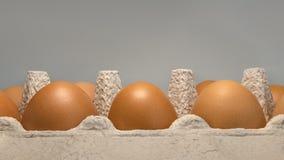 L'imballaggio eggs in una vista della cima e del primo piano della scatola di cartone Immagine Stock