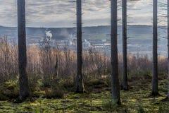 L'immagine dei tronchi di albero con muschio sulla terra, asciutta sfrega e un fondo complesso industriale immagine stock libera da diritti