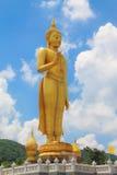 L'immagine del Buddha Immagini Stock