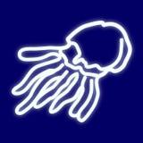 L'immagine della medusa Fotografie Stock Libere da Diritti