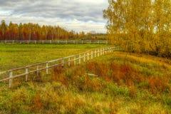 L'immagine di HDR del levade vuoto di autunno Fotografia Stock