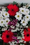 L'immagine di sfondo dei fiori variopinti Immagini Stock