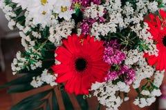 L'immagine di sfondo dei fiori variopinti Fotografie Stock