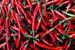 L'immagine mostra i peperoncini rossi piccanti Immagine Stock