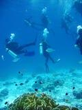 L'immersione subacquea è divertimento, a volte Immagine Stock