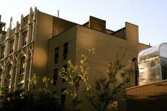 L'immeuble de Manhattan reflète la lumière du soleil photos libres de droits