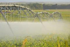 L'impianto di irrigazione del perno dell'azienda agricola innaffia il raccolto dell'agricoltore Immagini Stock Libere da Diritti