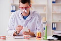 L'impianto funzionante dei denti del dentista in laboratorio medico Immagine Stock Libera da Diritti