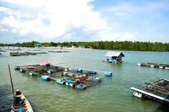 L'impresa di piscicoltura, Phuket, Tailandia Fotografia Stock Libera da Diritti
