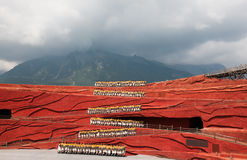 L'impressione di Lijiang Immagini Stock
