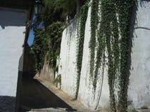 L'incanto del AlbaicÃn, Granada immagini stock