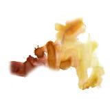 L'inchiostro schizza struttura liquida della macchia del punto di marrone giallo dell'acquerello della tintura acquerella la macr fotografia stock