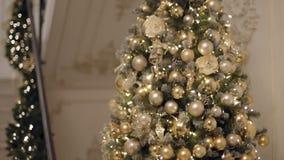 L'inclinazione su ha sparato dell'albero 2019 del nuovo anno o dell'albero di christas, hq piano dei prores 422 stock footage