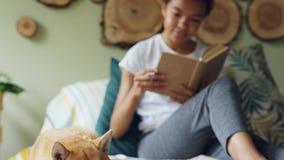 L'inclinazione-su ha sparato dello studente allegro che accarezza il suo libro di lettura del cane poi che si siede sul letto a c archivi video