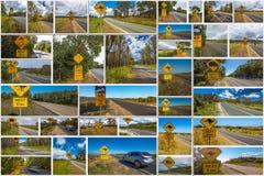 L'incrocio australiano firma il collage Immagine Stock Libera da Diritti