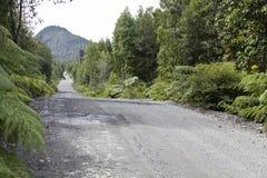 L'incrocio di strada australe attraverso il parco di Pumalin. Fotografie Stock