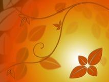 L'indennità lascia le manifestazioni Autumn Season Beauty del fondo Fotografia Stock