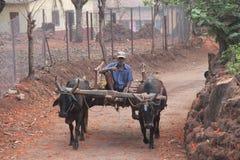 L'India felice Fotografia Stock Libera da Diritti