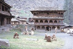1977 L'India Il quadrato principale davanti al tempio Malana Immagine Stock Libera da Diritti