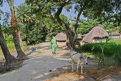 L'India rurale immagine stock libera da diritti