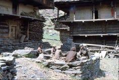 1977 L'India Un gruppo di persone che lavorano e che si rilassano Malana Fotografie Stock Libere da Diritti