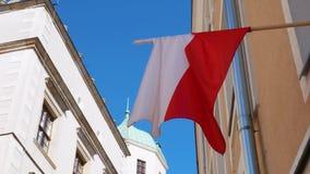 L'indicateur polonais ondulant dans le vent Fond de ciel bleu banque de vidéos