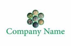 L'Indien épice le logo Images stock