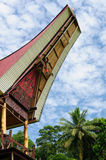L'Indonesia, Sulawesi, Tana Toraja Fotografie Stock