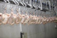 L'industrie alimentaire Images libres de droits