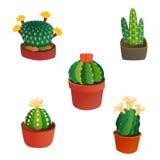 L'industrie mexicaine graphique de jardin de succulent et de plante tropicale de style de cactus de nature de désert de fleur de  Images stock