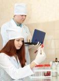 L'infermiera ed il medico lavora nel laboratorio della clinica Immagine Stock Libera da Diritti