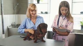L'infermiere sta prendendo le note e sta parlando con proprietario del cane video d archivio