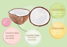 L'information de vecteur d'illustration d'aquarelle de lait de noix de coco Images libres de droits