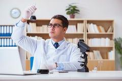 L'ingegnere chimico che lavora ai campioni dell'olio in laboratorio Immagini Stock Libere da Diritti