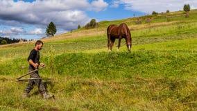 L'inizio dell'autunno nelle montagne carpatiche Immagine Stock Libera da Diritti