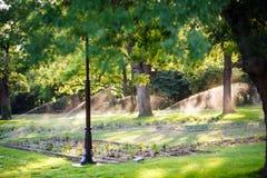 L'innaffiatura automatica dei prati inglesi nel parco, parecchie fontane è disposta lungo i vicoli Prati inglesi d'innaffiatura u fotografie stock libere da diritti
