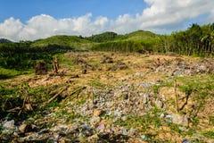 L'inquinamento dell'immondizia ed invade sulla foresta dall'essere umano Fotografia Stock