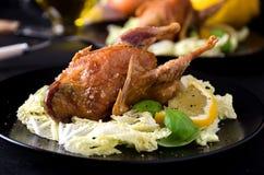 L'insalata al forno dei gallinacei della quaglia lascia il limone del basilico Fotografia Stock