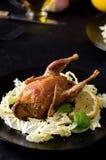 L'insalata al forno del gioco della quaglia lascia il basilico Immagine Stock